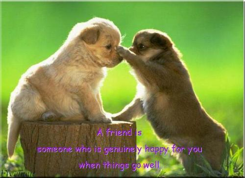 friends - friendship is like a soul dwelling in 2 bodies