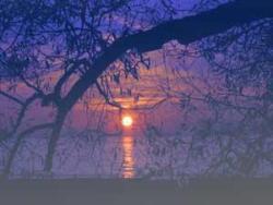 sunset - A beautiful sun set...