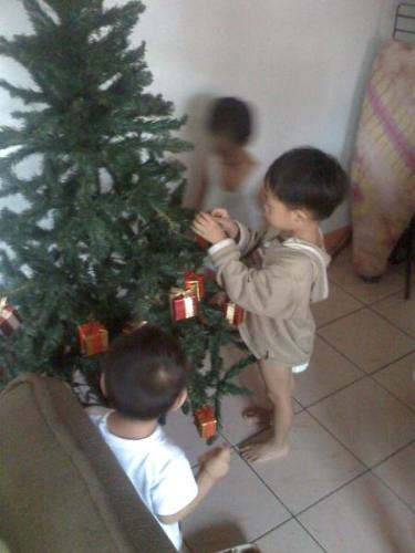 kids and christmas tree - Christmas tree is one of the most important thing to have when Christmas came, I just can not imagine Christmas without Christmas tree. We usually decorate ours with lights and balls and ribbons too. WE put an angel on top of it too.This are the kids, last year they help us making the Christmas tree!