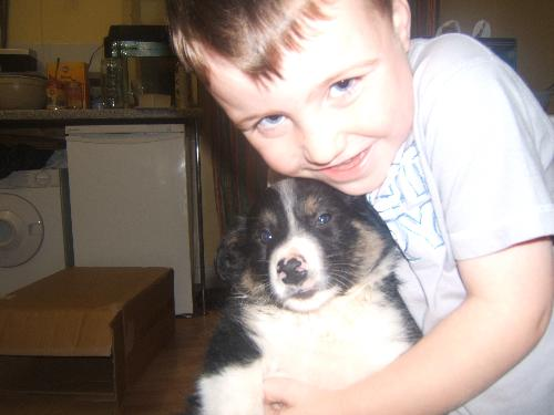 Ziggy with my son..........Love at first sight - Ziggy with my son.......love at first sight