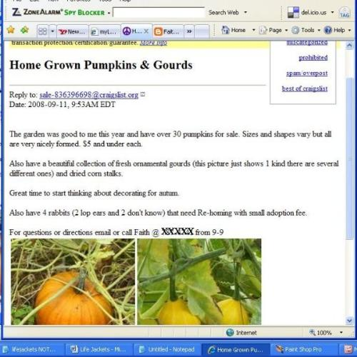 Screenshot Craigslist Ad - this screen shot is my first ad placed on Craigslist - a free service for selling items.