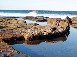 beach scene - a scene of a beach.
