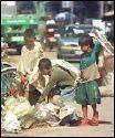 Street Children - Street children..