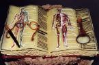 Human cake - A cake shaped into an open book with pictures of human's inside. I think this cake is for medical students.