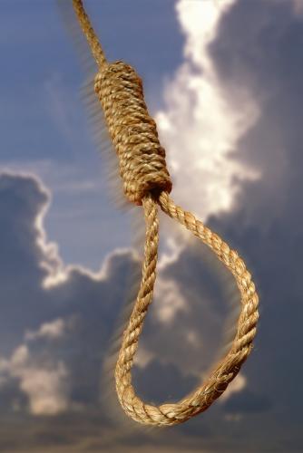 Noose... - Noose...