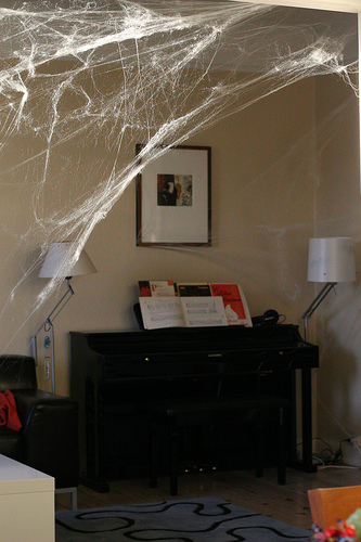 Cobwebs - I find that the corners of my ceiling start having cobwebs and it need to be cleaned well every couple of weeks. I have tried brushing it off and using a vacuum cleaner. They just reappear.