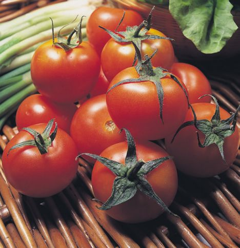 Tomatoes - Experts say a tomato a day, 8oz of tomato juice,150g of pasta sauce or one lycopene tablet a day is enough to raise levels of lycopene in the blood.