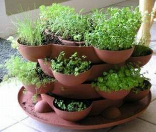 Herb Garden - This is a picture of a herb garden that I one day would love to have.