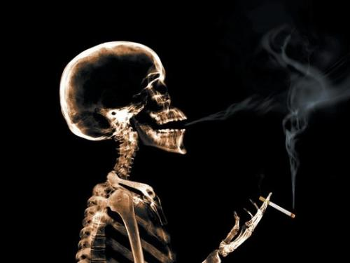 Smoking - Smoking, is a bad habit we should leave it.