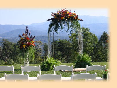 wedding - My wedding will be in a garden where I can see a lot of white flowers.