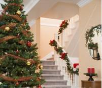 xmas tree - xmas tree in a house