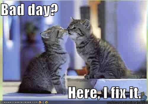 How to fix a bad day - lolcat pic taken from icanhascheezburger. this one is my favorite.