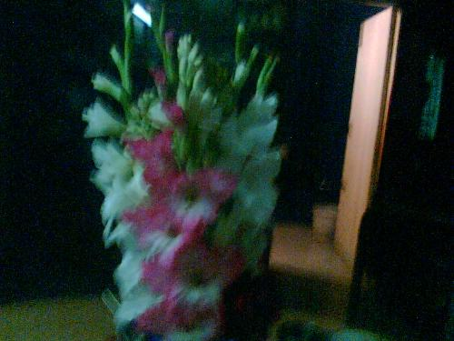 Flowers in a vase - The fragrent and beauty of flowers delighted every body.We can make habit to buy flowers.Then our mind will remain chaeerful for all the time.