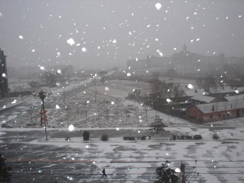 snow - our local weather