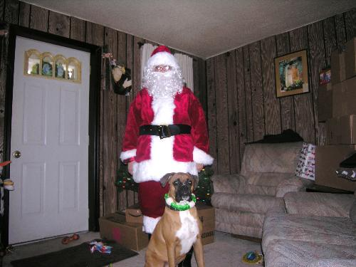 Santa and Buddy - Santa is me, and my beloved boxer Buddy his last chritmas with me