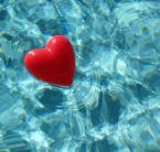 heart - valentines day..