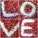 love - love love love love love