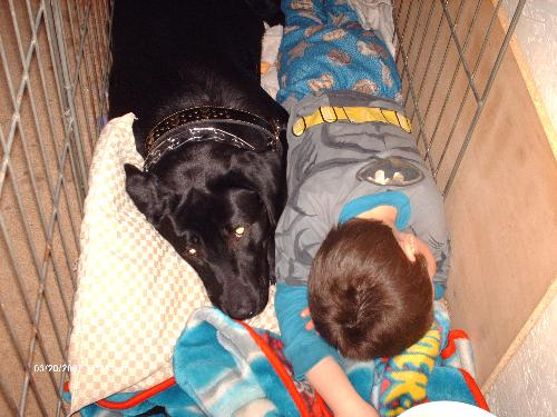 Now thats relaxin! - This is my son and our dog, he made a bed in her kennel and then laid down and went to sleep with her. it was so cute she woke up though when i went back but had no interest in getting out of her bed she was comfy cuddling with one of her favorite people and RELAXING!