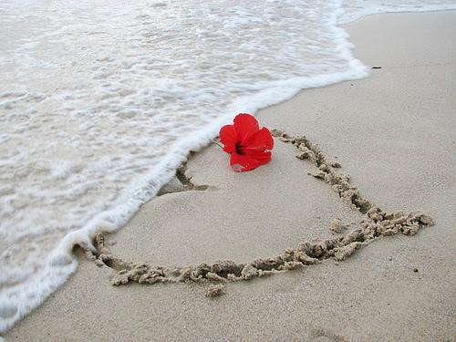 love, heart - love,heart