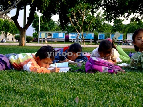 Primary school students - How diligent the chilren are