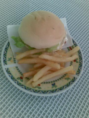 hamburger and fries - Aren't they a perfect combination?