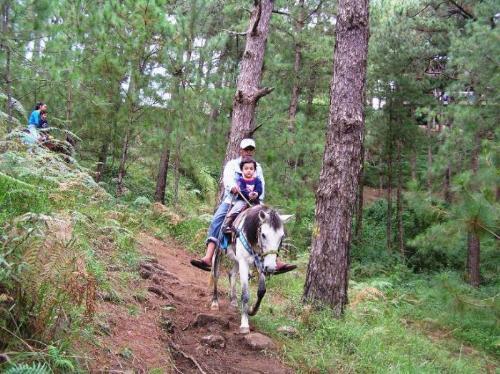 horse back riding - Horseback riding at Camp John Hay, right park, baguio country club
