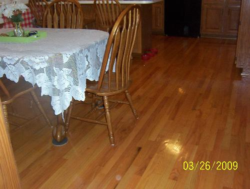 My Refinished Wood Floors - This is in the direction of my kitchen. Aren't they pretty?!