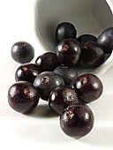 Acai Berry - Little purple berry