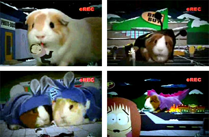 Pandemic II - Screenies from the South Park episode Pandemic II: The Startling. If you love guinea pigs you have to see this episode. No pigs were harmed during the filming of it.