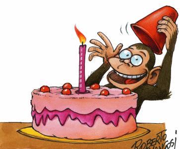 Birthday Monkey... - Birthday of a monkey...