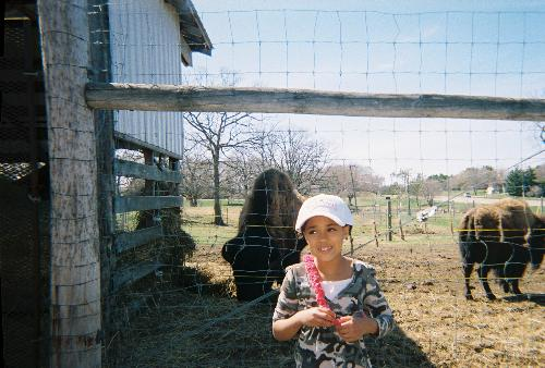 Great Niece and Buffalo - This is my niece at the park in Wadena Mn. With the big buffalo behind her.
