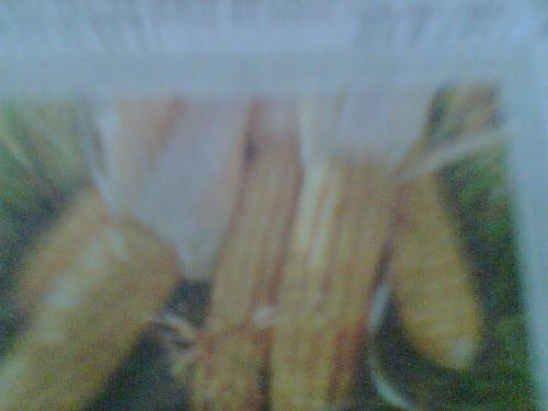 Maize - Maize is a corn which fulfill the demands of foods of the poor people of Africa and Asia. But recently the scientists of Spain and Germany invented one kind of maize which has three types of Vitamins.