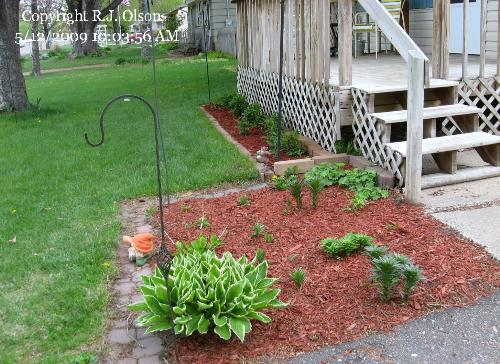 New Mulch added - I still need a couple more bags for 