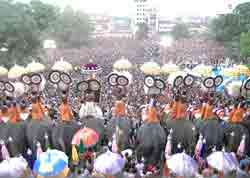 Trissur Pooram of Kerala - the trissur pooram is a very important temple festival of kerala. seen in this photo is the popular event of 'parasol display' which takes place atop elephants.