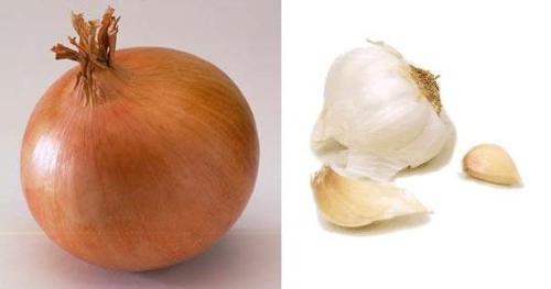 Garlic or onion? - Garlic or onion? that's the question!