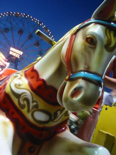 Carosel - Fairs and carnivals are great fun. The carosel ponies are so pretty.