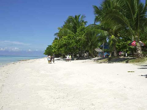 very nice white sand  - Dumaluan beach resort found at Panglao Bohol, Philippines. This is one of the beautiful beaches here in Bohol,