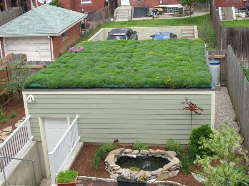 a green roof - against global warming =D