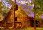 Barn in the fireld - Rustic barn in the field