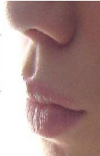 philtrum - dent that runs from under the nose to the top of the lip