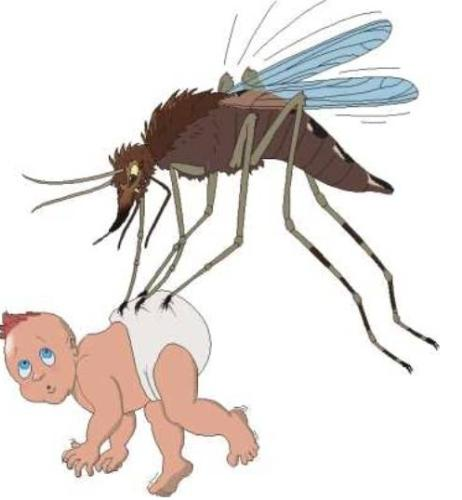 Mosquitoes - poor little one taking the brunt of a nasty mosquitoe!