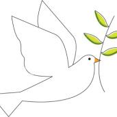 Bird - The dove of peace