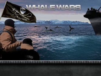 Whale Wars  - This is a picture of the show Whale wars on animal plant TV. It's about saving our whales in the Atlantic ocean