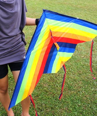 My kite - The kite is pretty but it doesn't even FLY!!!!!!!!!!!!!!!!!!!!!!!!!!!!!!!!!!!!!!!!