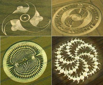 Crop Circles - Image of crop circles