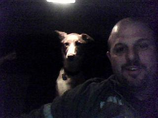 Abby the Dog in the backseat. - A picture of the dog in the backseat I took using the webcam on a Toshiba Satellite laptop.