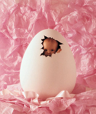 An egg with a baby - A baby like a gift from an egg