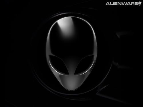 1024x768 Alienware black head
