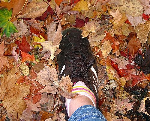 Feet  - A photo of a step in some fall leaves