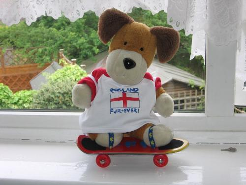England Fur-Ever! - Kipper the dog, a true English patriot,on his skateboard!